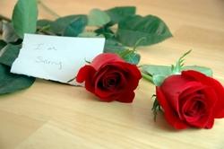 אתר הכרויות – איך לבקש סליחה מבן זוג